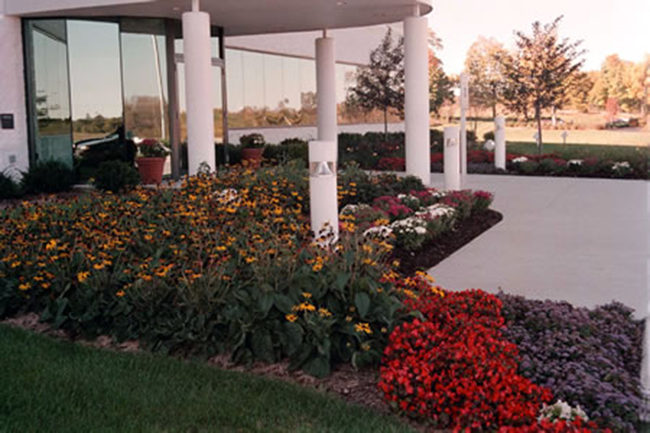 Commercial Plantings